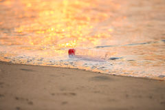 Discarded water bottle laying on a beach. Stock Photography