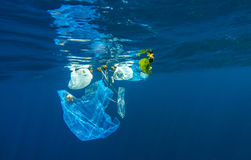 Discarded plastic in ocean. Discarded plastic bag drifting on ocean, Maldives Stock Photo
