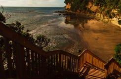 Discesa al mare, penisola di Whangaparaoa, Nuova Zelanda Fotografia Stock