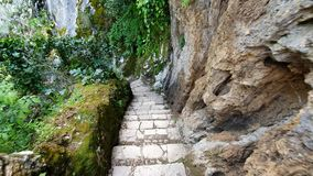 Discesa delle scale lungo la scogliera nel parco della fauna selvatica Primo punto di vista della persona Passeggiata nel selvagg stock footage