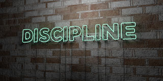 DISCIPLINE - Glowing Neon Sign on stonework wall - 3D rendered royalty free stock illustration Royalty Free Stock Photography