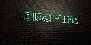 DISCIPLINE -Realistic Neon Sign on Brick Wall background - 3D rendered royalty free stock image Royalty Free Stock Images