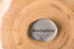 Discipline in stone on tree. Discipline in stone on section of the trunk with annual rings royalty free stock images