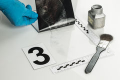 Disclosure of forensic evidence. Royalty Free Stock Photo