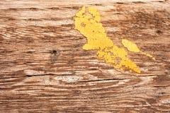 Disco amarillo de la pintura en la madera Fotos de archivo