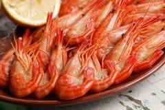 Disco apetitoso del camarón Fotografía de archivo libre de regalías