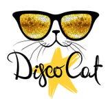 Disco cat Royalty Free Stock Photos
