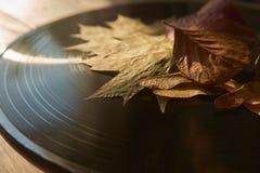 Disco de vinilo del vintage y hojas de otoño imagen de archivo