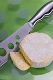Disco del queso Foto de archivo