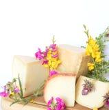 Disco del queso con el italiano de la pera y del parmesano Fotos de archivo