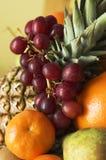 Disco della frutta Immagine Stock Libera da Diritti