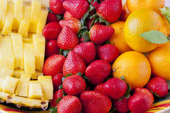 Disco della frutta Immagini Stock