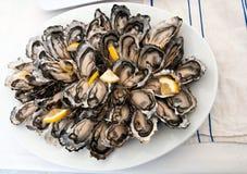Disco fresco dell'ostrica Immagini Stock Libere da Diritti