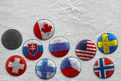 Disco no gelo Fotos de Stock Royalty Free