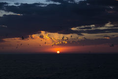 Disco rosso del sole. Tramonto del mare. Immagini Stock