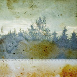 Discolorated forest. Vintage photograph of trees in a forest on stained paper background. Abstract illustration Stock Photo