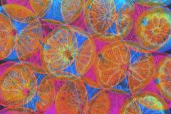 Discomehrfarbenzitrusfrucht-Zusammenfassungshintergrund stockbilder