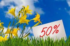 Disconto para a venda, um disconto de 50 por cento, dia-lírio bonito das flores no close-up da grama Fotos de Stock