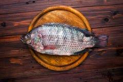 Discos de los pescados en la tabla de madera Imágenes de archivo libres de regalías