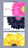 Discount gift cards set. Realistic flowers design Royalty Free Stock Photo