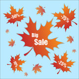 Discount with leaves Royalty Free Stock Images