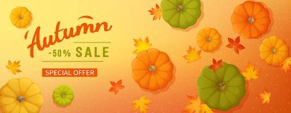 Discount, sale in autumn. Horizontal banner flyer with pumpkins, maple leaves on a colored background. Special seasonal offer. Vector illustration. Top view vector illustration