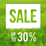 Spring sale poster. 30 off discount promotion sale.