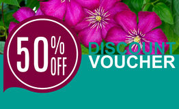 Discount Voucher Template Rastr Illustration. For Your Business Royalty Free Stock Images