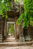 Discovered in the midst of the Cambodian jungle the Angkor Complex. Temples emerge from the Cambodian jungle to once again amaze us with what marvels ancient man stock photography