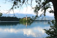 Discovering the church in lake Bled Stock Image