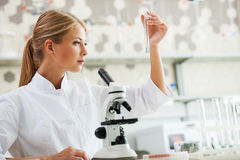 Discovering cure. Royalty Free Stock Photo