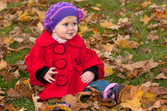 Discovering first autumn leaves Royalty Free Stock Photography