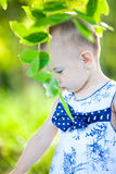 Discovering the nature Stock Photography