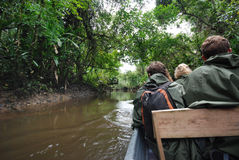 Discovering the rainforest on a boat, Amazonia, Ecuador Royalty Free Stock Image