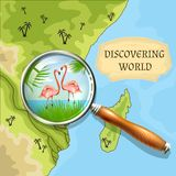 Discovering World Background Stock Photo