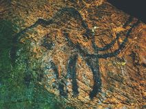 Discovery of human history. Prehistoric art of mammoth in sandstone cave Royalty Free Stock Image