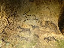 Discovery of prehistoric paint of caveman hunt in sandstone cave. Paint of human hunting Stock Photo