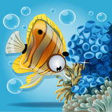 Discus fish on a blue background with anemones Royalty Free Stock Image