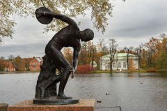 Discus thrower statue in Tsarskoye Selo Pushkin, Saint-Petersburg. Discus thrower statue in Catherine park, Tsarskoye Selo Pushkin, neighborhood of Saint Royalty Free Stock Photography