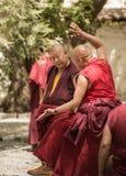 Discusión de los monjes Fotografía de archivo libre de regalías