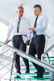 Discussing business contract. Royalty Free Stock Photo