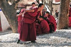 Discussing scriptures monks in Tibet. Tibetan monks at Sera monastery debating in the courtyard Stock Images