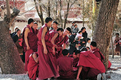 Discussing scriptures monks in Tibet. Tibetan monks at Sera monastery debating in the courtyard Royalty Free Stock Photography
