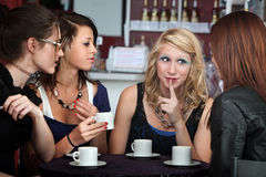 Discussion in a Cafe Stock Photo