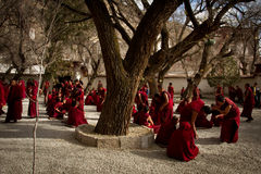 Discussion des moines de Sera Monastery Lhasa Tibet Photos libres de droits