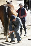 discussion horse owner vet στοκ φωτογραφία