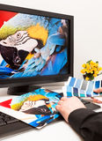 Diseñador en el trabajo. Muestras del color. imagen de archivo