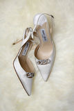 Diseñador Shoe de las mujeres de Jimmy Choo Imagenes de archivo