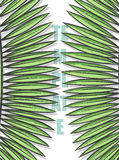 Diseñe el fondo con las hojas de palmeras en estilo del bosquejo Imágenes de archivo libres de regalías