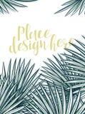 Diseñe el fondo con las hojas de palmeras en estilo del bosquejo Imagen de archivo